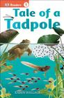 DK Readers L1: Tale of a Tadpole (DK Readers Level 1) Cover Image