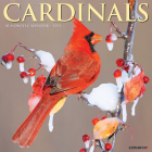 Cardinals 2021 Wall Calendar Cover Image