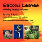 Second Leaves Cover Image