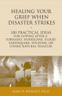 Healing Your Grief When Disaster Strikes: 100 Practical Ideas for Coping After a Tornado, Hurricane, Flood, Earthquake, Wildfire, or Other Natural Disaster (The 100 Ideas Series) Cover Image