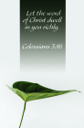 Let the Word Bulletin (Pkg 100) General Worship Cover Image