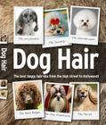 Dog Hair Cover Image