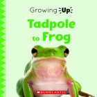 Tadpole to Frog (Growing Up) (Paperback) (Explore the Life Cycle!) Cover Image