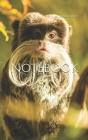 Notebook: animal monkey mammal zoo primate monkies Cover Image