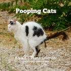 Pooping Cats 8.5 X 8.5 Calendar January 2021 -December 2021: Cats Cover Monthly Calendar with U.S./UK/ Canadian/Christian/Jewish/Muslim Holidays -Weir Cover Image