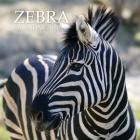 Zebra Calendar 2020: 16 Month Calendar Cover Image