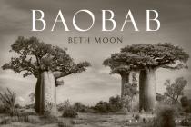 Baobab Cover Image