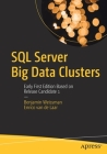 SQL Server Big Data Clusters: Early First Edition Based on Release Candidate 1 Cover Image
