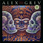 Alex Grey 2020 Wall Calendar Cover Image