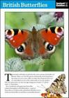 British Butterflies Cover Image