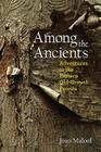 Among the Ancients: Adventures in the Eastern Old-Growth Forests Cover Image