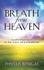 Breath from Heaven: God's Presence in the Face of a Pandemic Cover Image