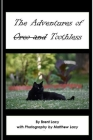 The Adventures of Toothless Cover Image