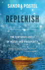 Replenish: The Virtuous Cycle of Water and Prosperity Cover Image