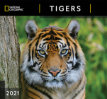 Cal 2021- National Geographic Tigers Wall Cover Image