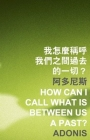 How Can I Call What Is Between Us a Past? (Islands or Continents) Cover Image