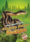 Common Garter Snakes (North American Animals) Cover Image