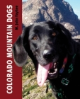 Colorado Mountain Dogs Cover Image