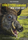 Could You Survive the New Stone Age?: An Interactive Prehistoric Adventure Cover Image