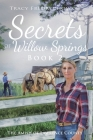 Secrets of Willow Springs - Book 2: The Amish of Lawrence County Cover Image