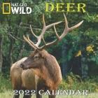 Deer Calendar 2022: DEER calendar 2022