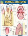 Dental Anatomy Cover Image
