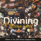 Divining Cover Image