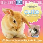 Cute Overload Page-A-Day Calendar 2010 Cover Image