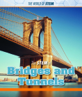 The Stem of Bridges and Tunnels Cover Image