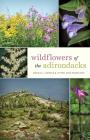 Wildflowers of the Adirondacks Cover Image