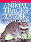 Animal Tracks of New York & Pennsylvania (Animal Tracks Guides) Cover Image