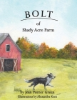 Bolt of Shady Acres Cover Image