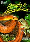 Florida's Fabulous Reptiles and Amphibians: Snakes, Lizards, Alligators, Frogs, and Turtles Cover Image