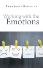 Working with the Emotions Cover Image