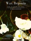 Wax Begonia: How to grow and care Cover Image