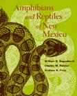 Amphibians and Reptiles of New Mexico Cover Image