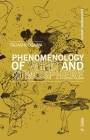 The Phenomenology of Wind and Atmospheres Cover Image