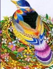 バーズ 大人の塗り絵: オーデュボン鳥類図 Cover Image