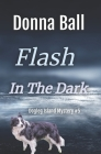 Flash in the Dark Cover Image
