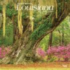 Louisiana Wild & Scenic 2021 Square Cover Image