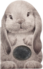 Furry Bunny (Mini Friends Touch & Feel) Cover Image
