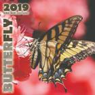 Butterfly 2019 Mini Wall Calendar Cover Image