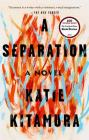 A Separation: A Novel Cover Image