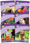 Jolly Phonics Readers Level 5, Our World: In Print Letters (Ae) Cover Image