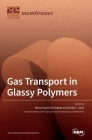 Gas Transport in Glassy Polymers Cover Image