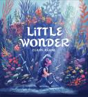 Little Wonder Cover Image