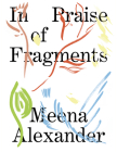 In Praise of Fragments Cover Image