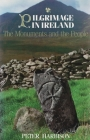 Pilgrimage in Ireland: The Monuments and the People (Irish Studies) Cover Image