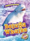 Beluga Whales Cover Image