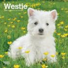 West Highland White Terrier Puppies 2020 Mini 7x7 Cover Image